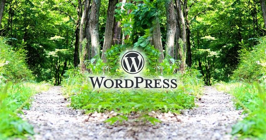 【WordPress】特定のページだけデザインなどを変更する方法 + おもな条件分岐タグ